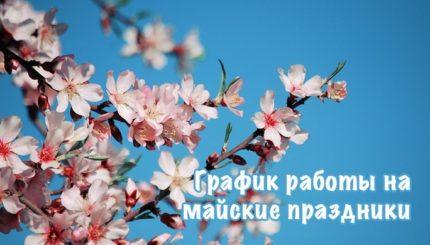 Фото Майские праздники