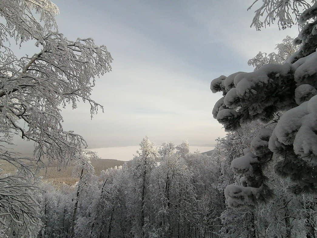 IMG 20210106 134413 - Хребет Заозерный